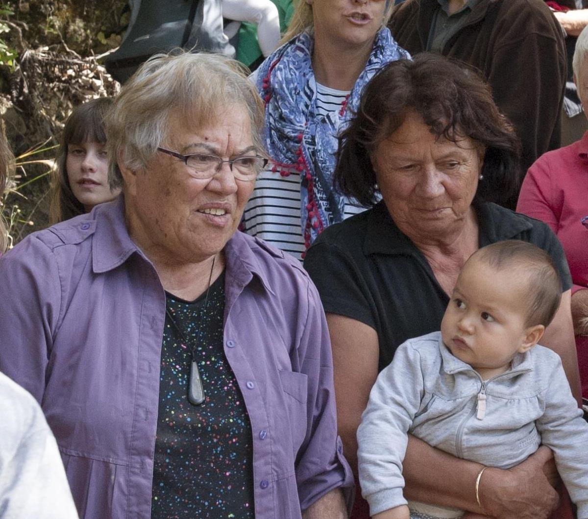 Kaitiaki o Te Taiao - Photo's  - Witnessing the release of Sth Is Robin on Kaipupu Point, 1 March 2016