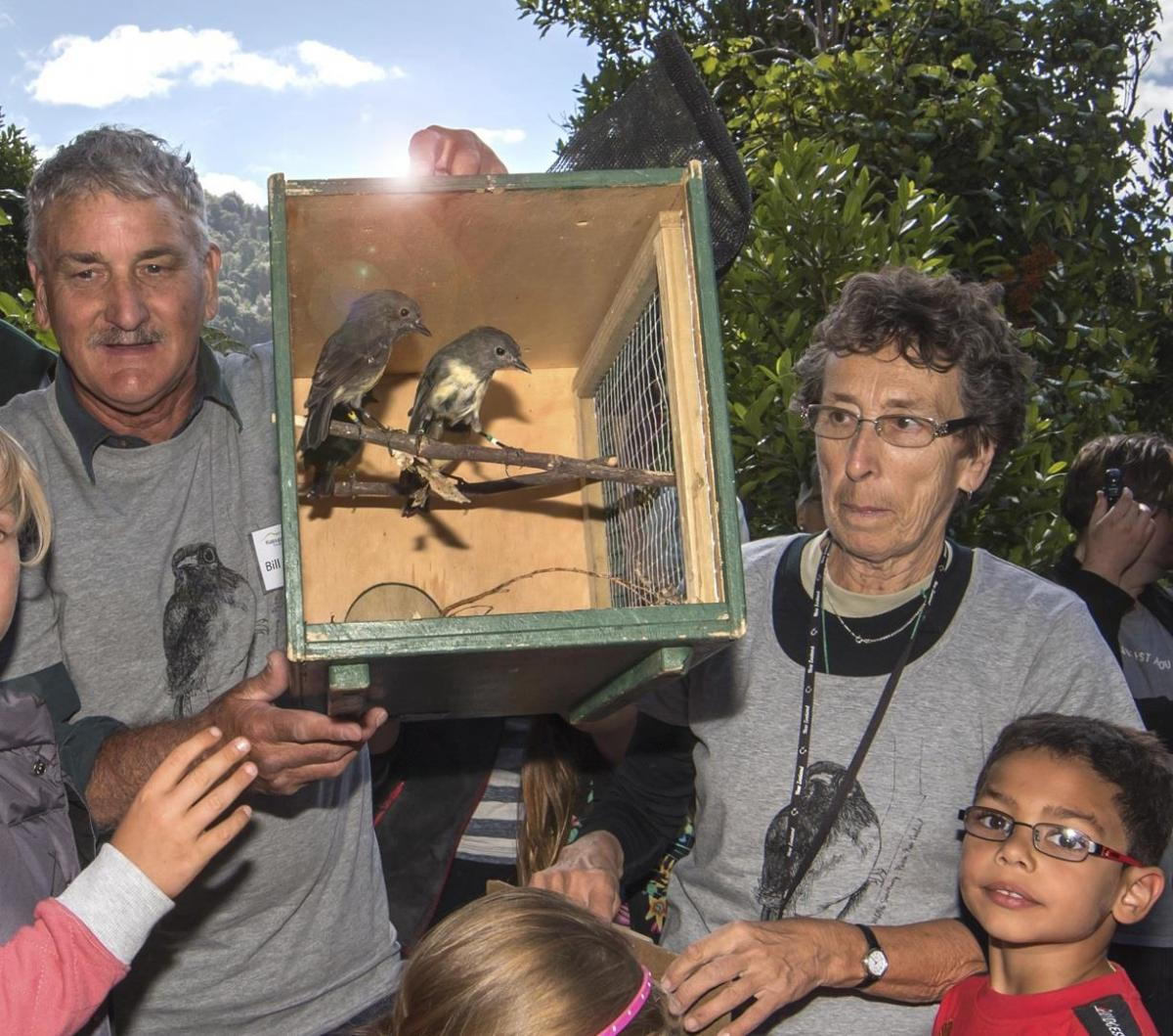 Photo Gallery  - Releasing Sth Is Robin on Kaipupu Point, 1 March 2016