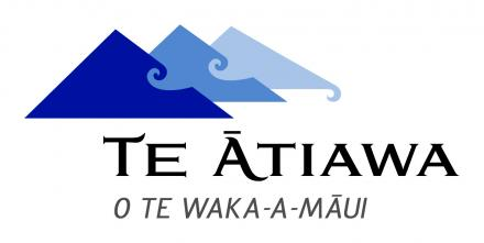 Planning for succession in the Kaitiaki o Te Taiao  (KT) Office – an emerging employment opportunity for a Te Ātiawa professional